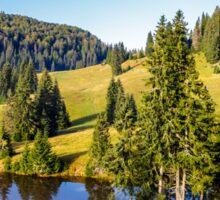 pine trees near lake on the meadow Sticker