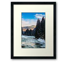 frozen river in forest Framed Print