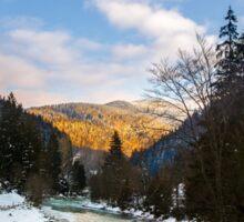 frozen river in forest Sticker