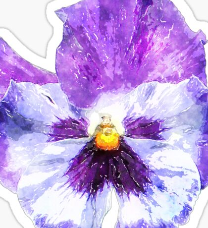 Pansy Watercolor flower Sticker
