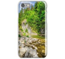 shore of forest river iPhone Case/Skin