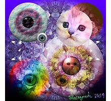Crystal Cats Photographic Print