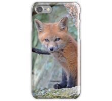 Fox Wildlife iPhone Case/Skin