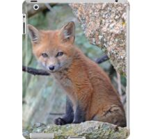 Fox Wildlife iPad Case/Skin