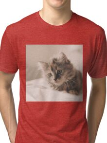 Cute Cat Kitten Tri-blend T-Shirt