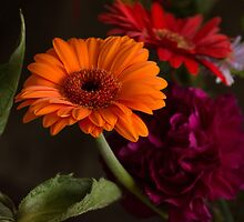 Autumnal flowers by Janice Heppenstall