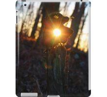 Sunshine In Devil's Den iPad Case/Skin