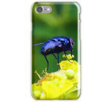 Bluebottle iPhone Case/Skin