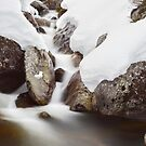 Rocky Valley Stream, Falls Creek, Victoria Australia by Michael Boniwell