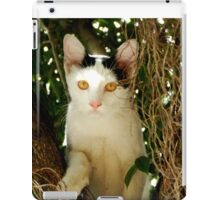 Who are you? iPad Case/Skin