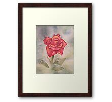 Rose w/ dewdrops-scroll down to view more of my work Framed Print