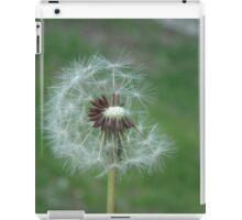 The beautiful weed iPad Case/Skin