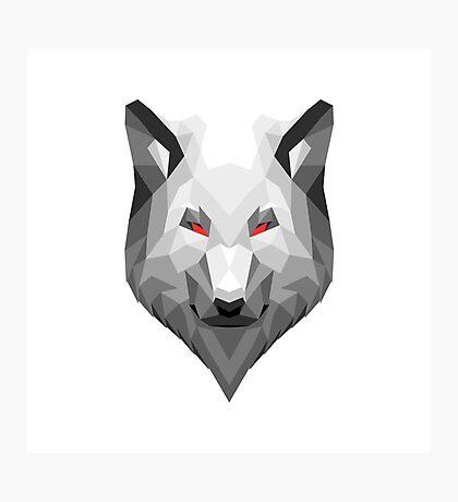 Animal Head Trophy Wolf Photographic Print