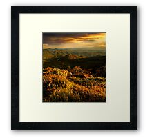 Round Bald September  Framed Print
