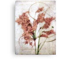 Wild Indian Rice in Autumn #2 Canvas Print