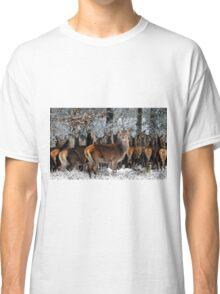 Deer in winter Classic T-Shirt