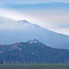 Mt Tam by David Denny