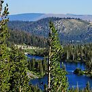 Sierra Landscape by marilyn diaz