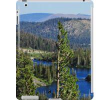 Sierra Landscape iPad Case/Skin