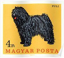 1967 Hungary Puli Dog Postage Stamp Poster