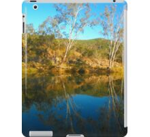 Brisbane Valley Treasure iPad Case/Skin