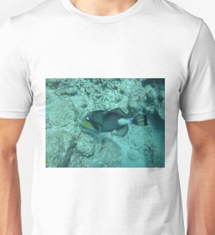 Trigger Fish Unisex T-Shirt