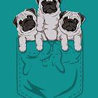 Pocket Pug by kellabell9