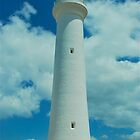 Split Point Lighthouse by Penny Smith