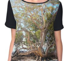 From the Mangroves Chiffon Top