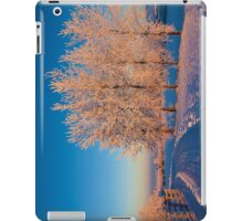 Frozen Poplar Trees I, Northern Ireland iPad Case/Skin