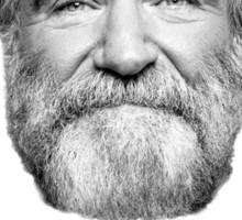 Robin Williams Tribute ~ Oh Captain, My Captain! Sticker