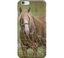 On The Other Side Of The Fence iPhone Case/Skin