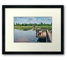 Jump into the pond Framed Print