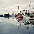 Winter—Victoria Dock, Hobart by Brett Rogers