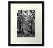 Smoky Mountain Scene-000322 Framed Print