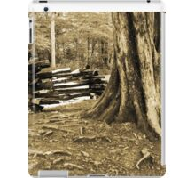 Smoky Mountain Scene-000388 iPad Case/Skin