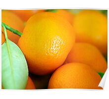 Qumquats Poster