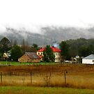 Town of Murrurundi, New South Wales by Marilyn Harris