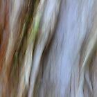 Eucalypt by Kitsmumma