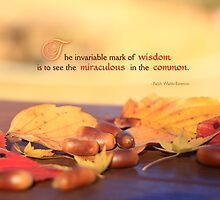 Miraculous in the Common on a Fine Autumn Day by Beverly Claire Kaiya