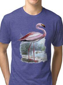 Puna Flamingo Tri-blend T-Shirt