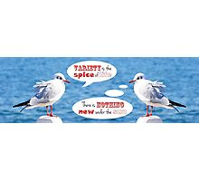 Philosophical Seagulls Variety is the Spice of Life Photographic Print