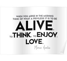 what a privilege it is to be alive - marcus aurelius Poster