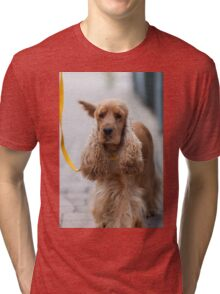 cocker dog Tri-blend T-Shirt