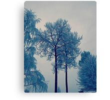 'Winter Trees In Leksand' Canvas Print