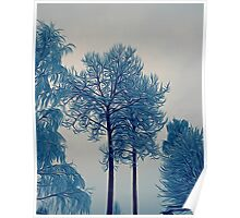 'Winter Trees In Leksand' Poster