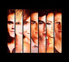 The Vampire Diaries by D. Abdel.