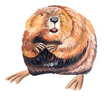 Beaver by popartbynatalie
