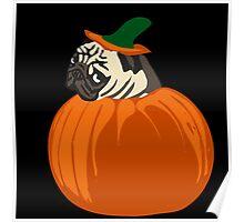 pumpkin pug Poster