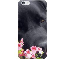 A Bed of Flowers iPhone Case/Skin